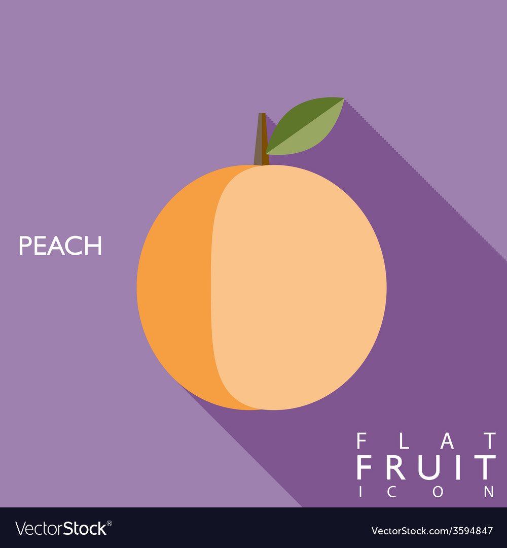 Peach flat icon with long shadow vector | Price: 1 Credit (USD $1)