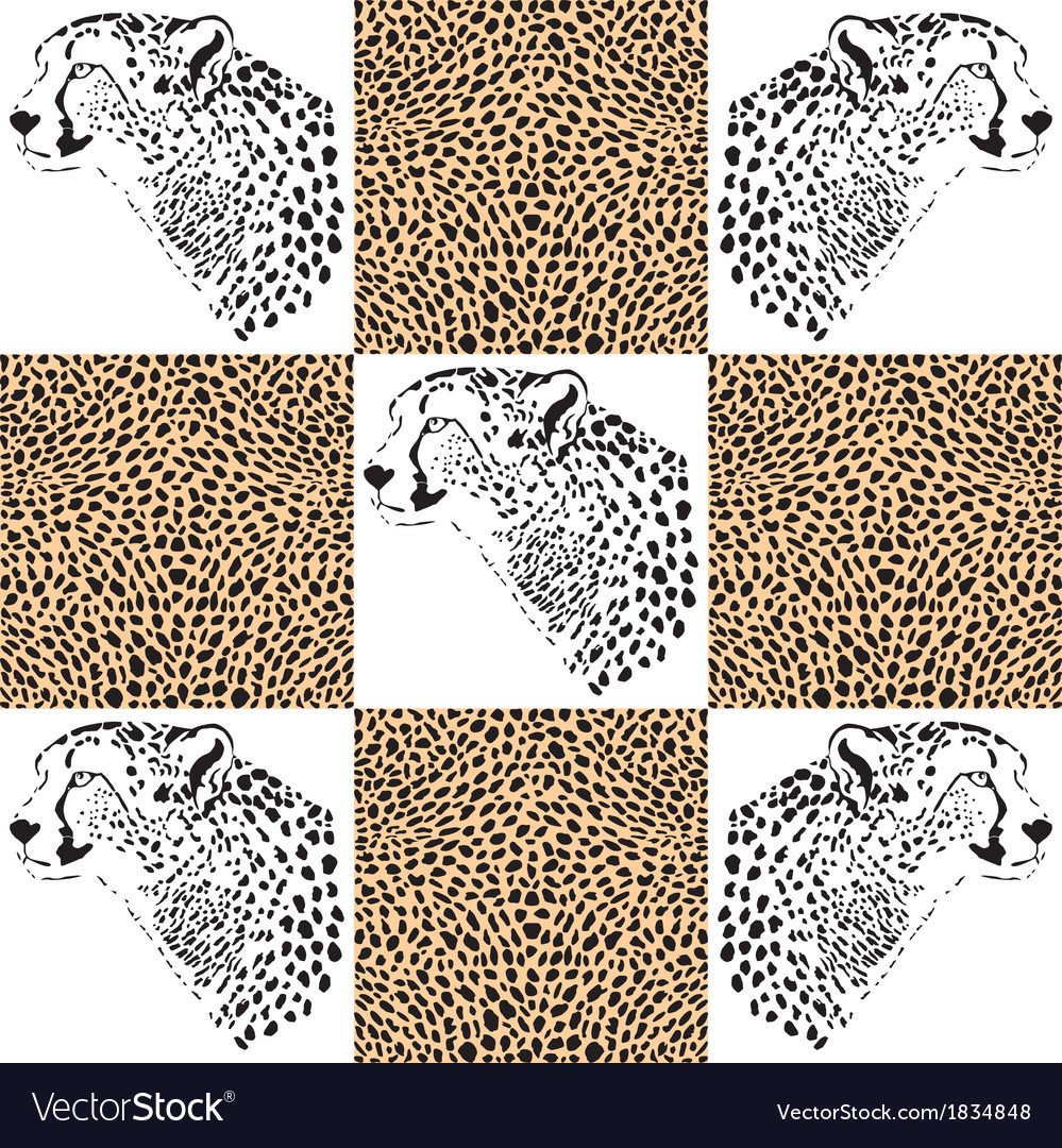 Cheetah patterns for textiles and wallpaper vector | Price: 1 Credit (USD $1)