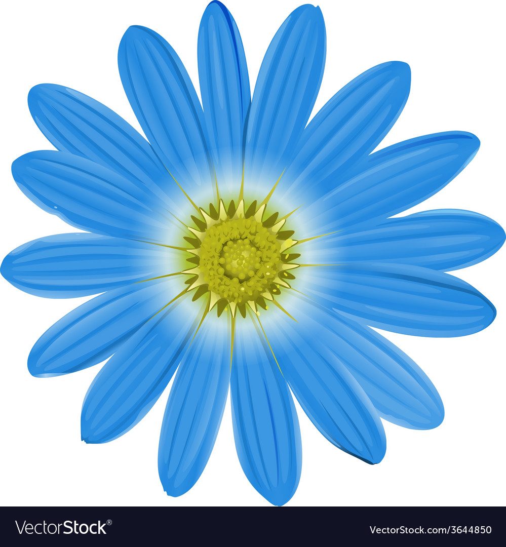 A blue flower vector | Price: 1 Credit (USD $1)