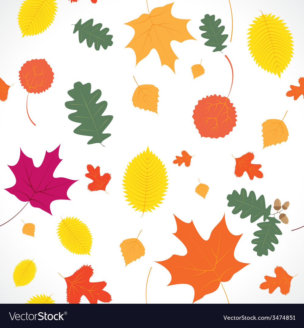 Autumn leaf fall vector | Price: 1 Credit (USD $1)