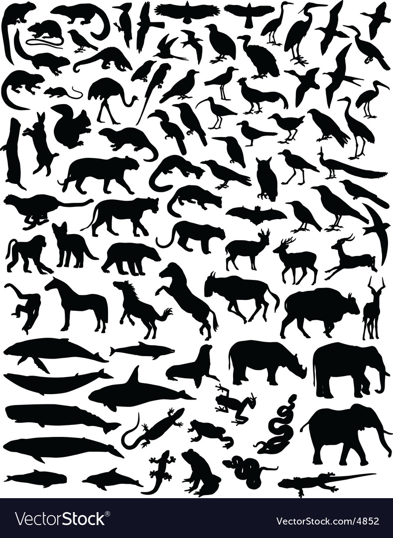 Animal outlines vector | Price: 3 Credit (USD $3)