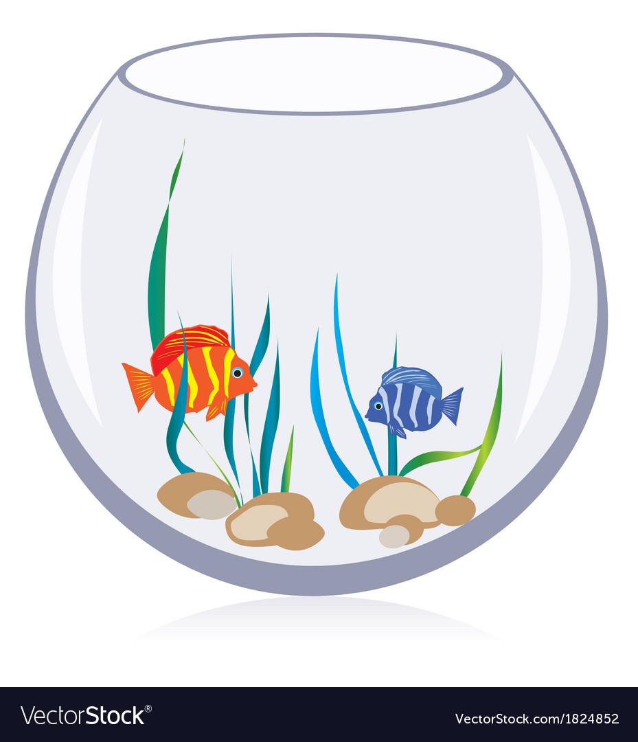 Fish aquarium vector   Price: 1 Credit (USD $1)