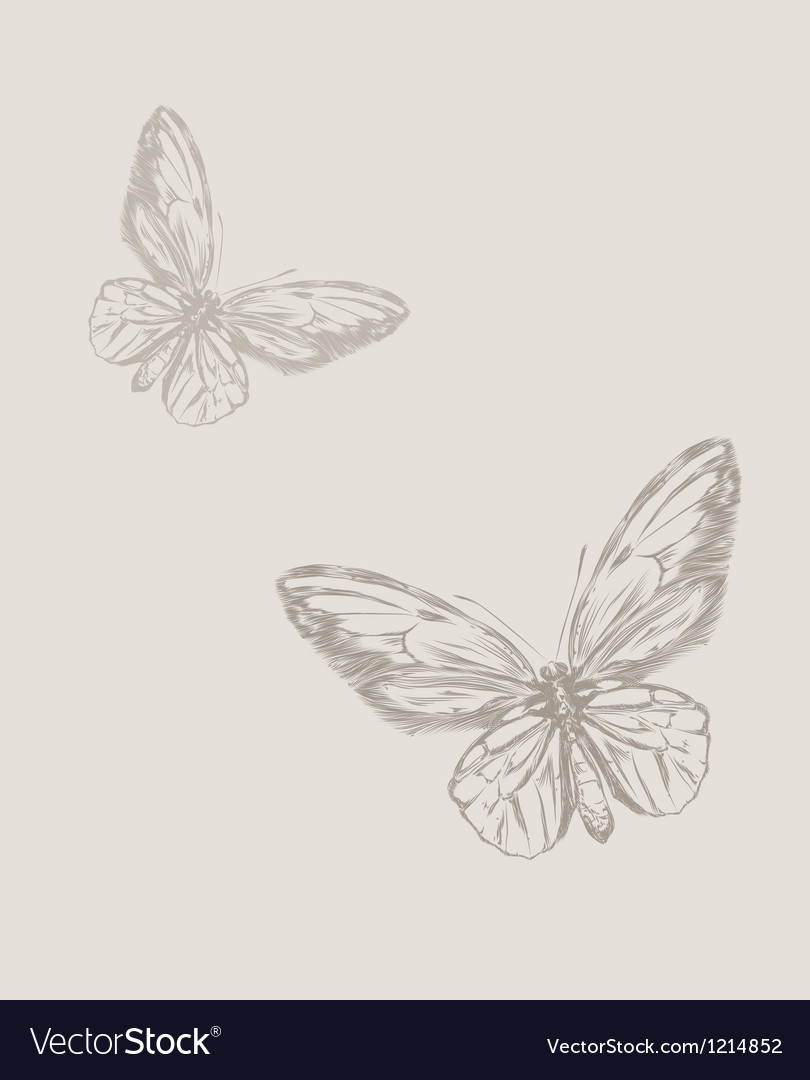 Vintage hand drawing butterfly eps 8 vector | Price: 1 Credit (USD $1)