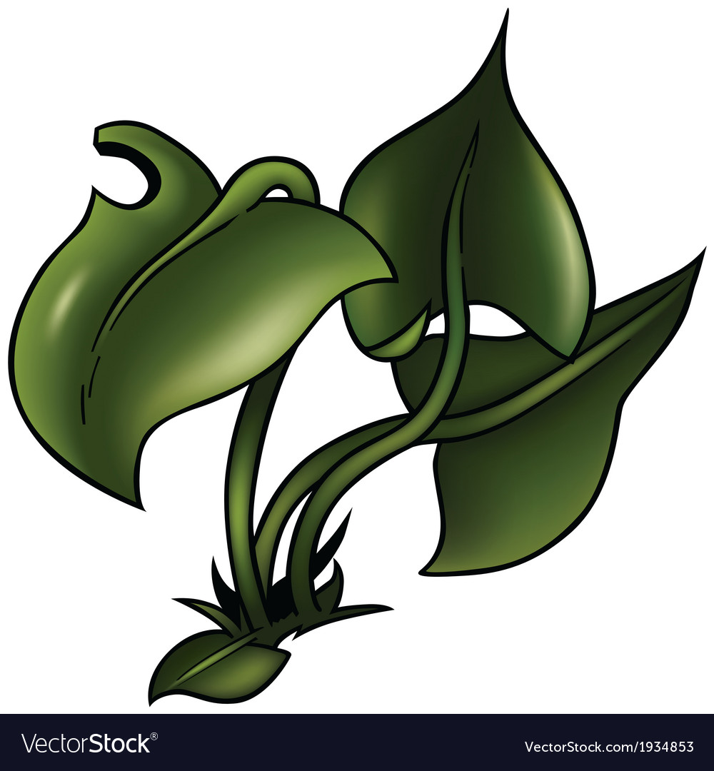 Grass with big leafs vector | Price: 3 Credit (USD $3)