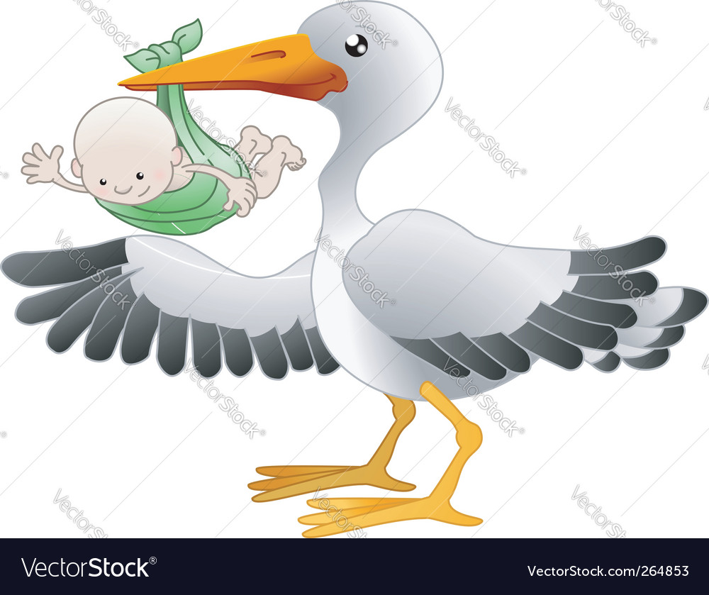 Stork with a newborn baby vector | Price: 1 Credit (USD $1)