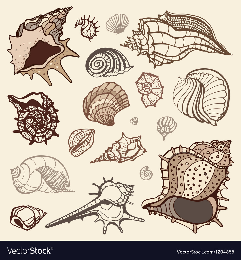 Sea collection hand drawn vector | Price: 1 Credit (USD $1)