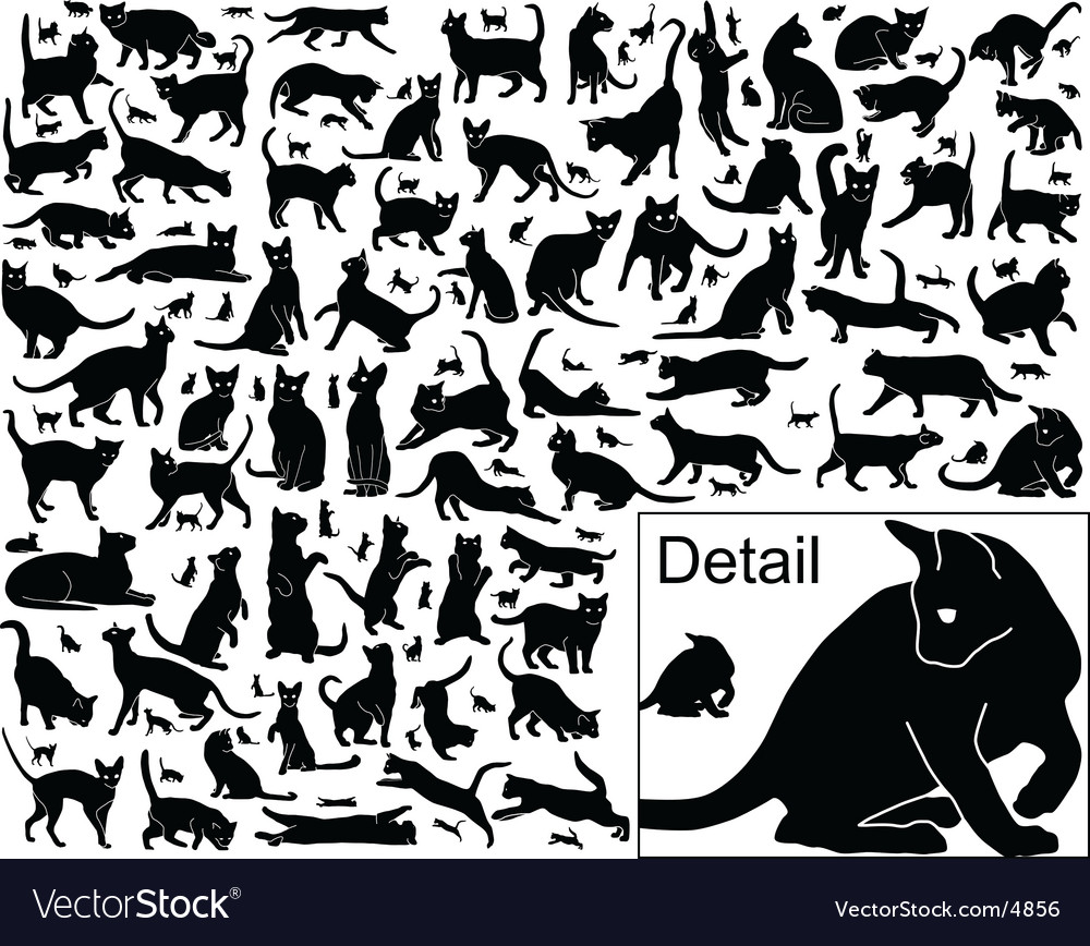Cat outlines vector | Price: 1 Credit (USD $1)