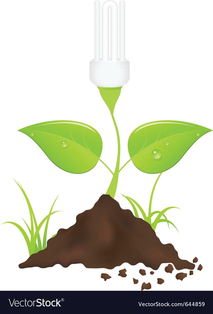 Light bulb plant vector | Price: 3 Credit (USD $3)