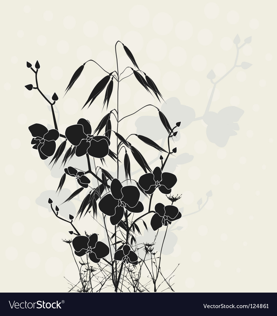 Orchids and oats vector | Price: 1 Credit (USD $1)