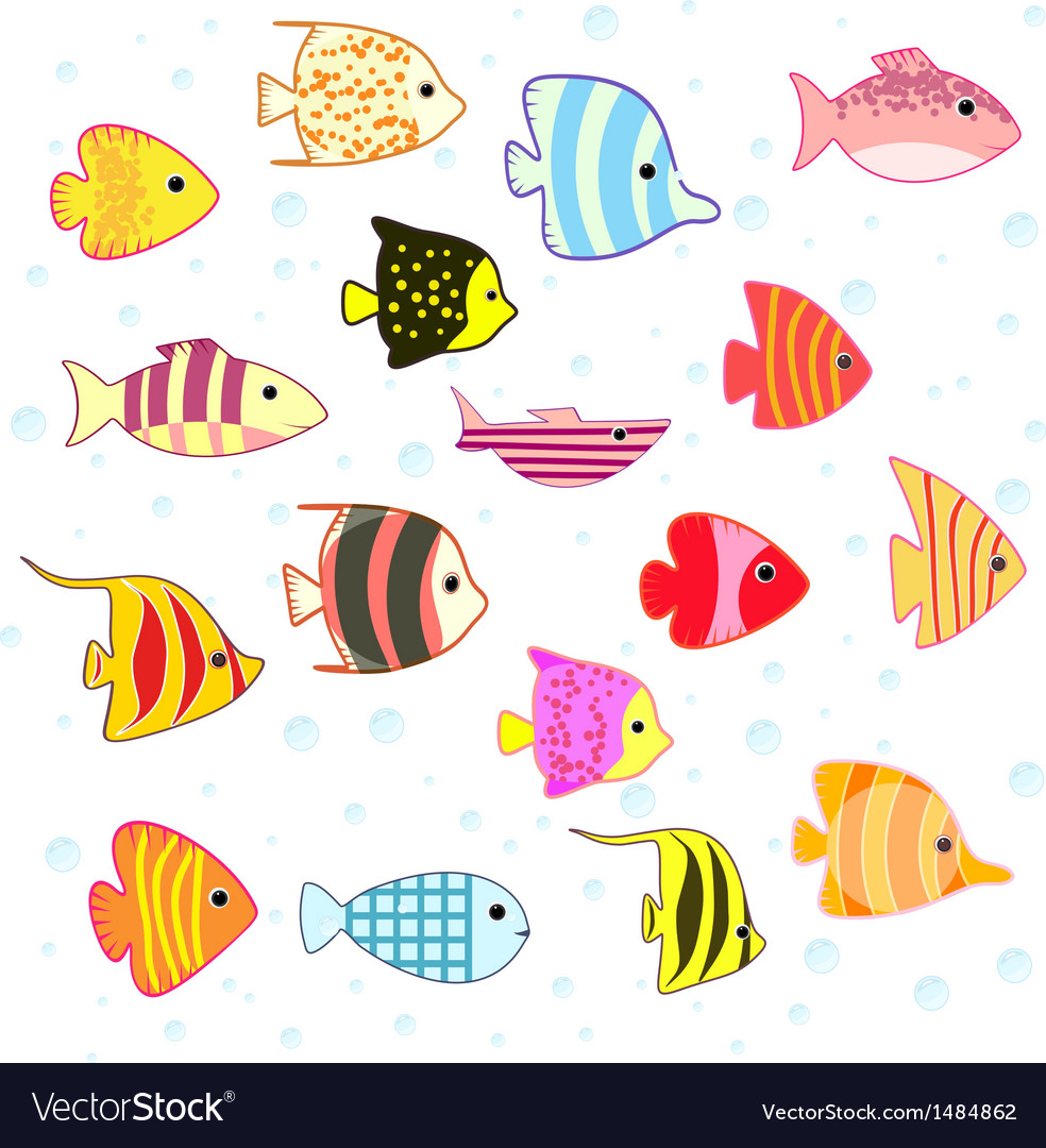 Cartoon tropical fish set vector | Price: 1 Credit (USD $1)