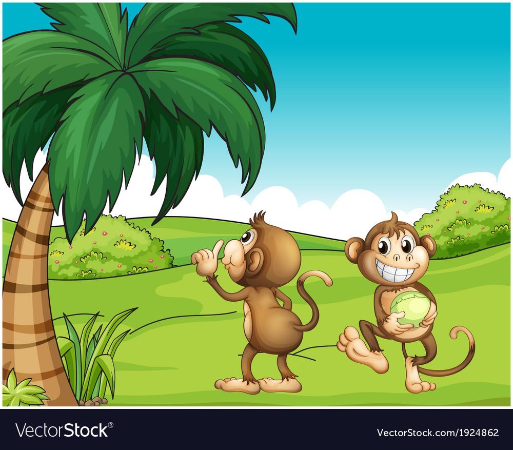 Two monkeys near the coconut tree vector