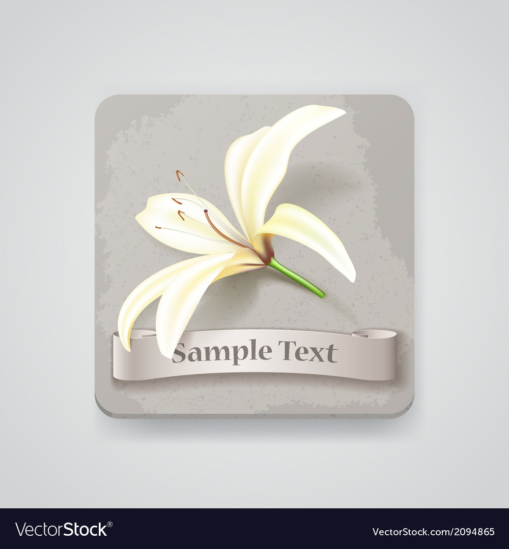 Realistic lily flower icon vector | Price: 1 Credit (USD $1)