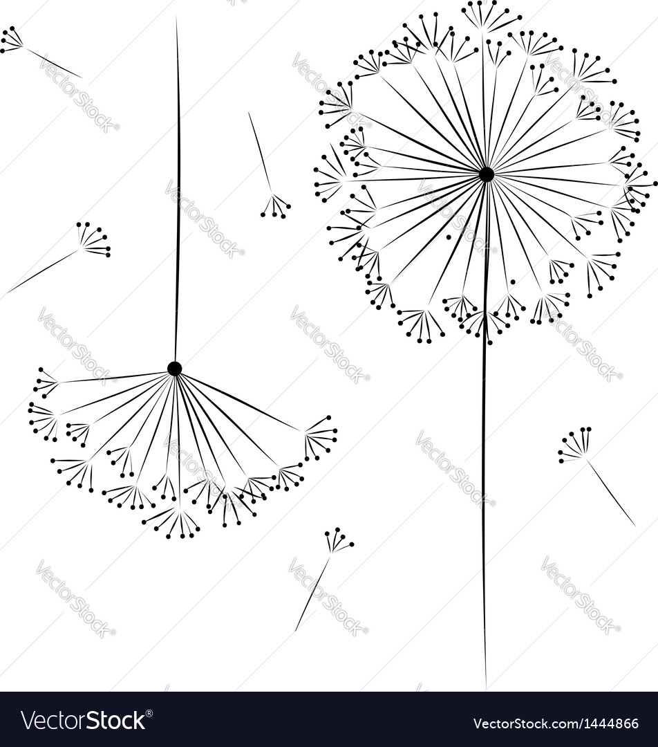 Dandelion flower for your design vector | Price: 1 Credit (USD $1)