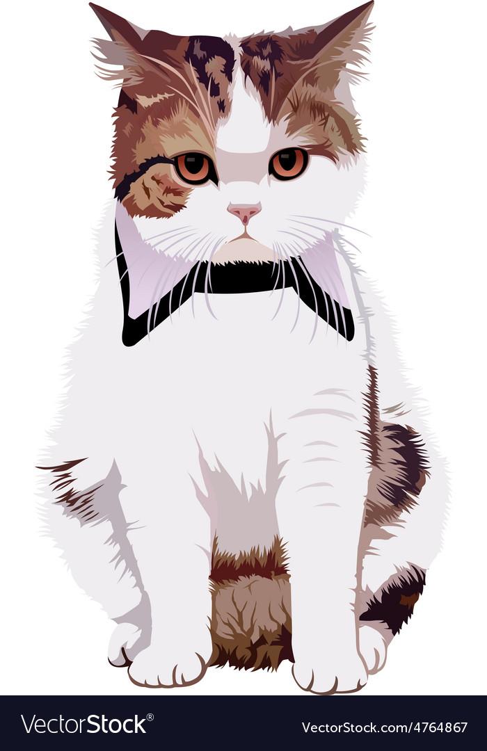 Cat2 vector | Price: 1 Credit (USD $1)