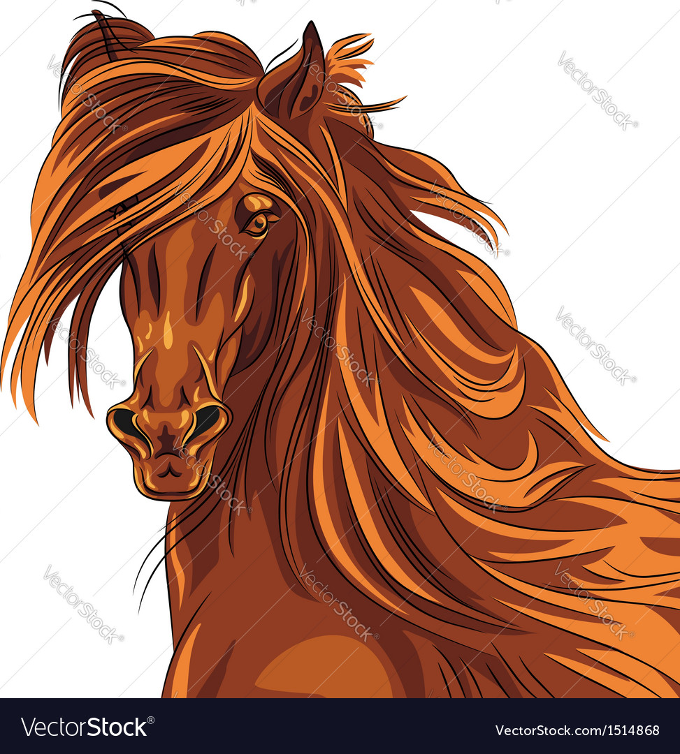 Beautiful red horse with long mane vector | Price: 1 Credit (USD $1)