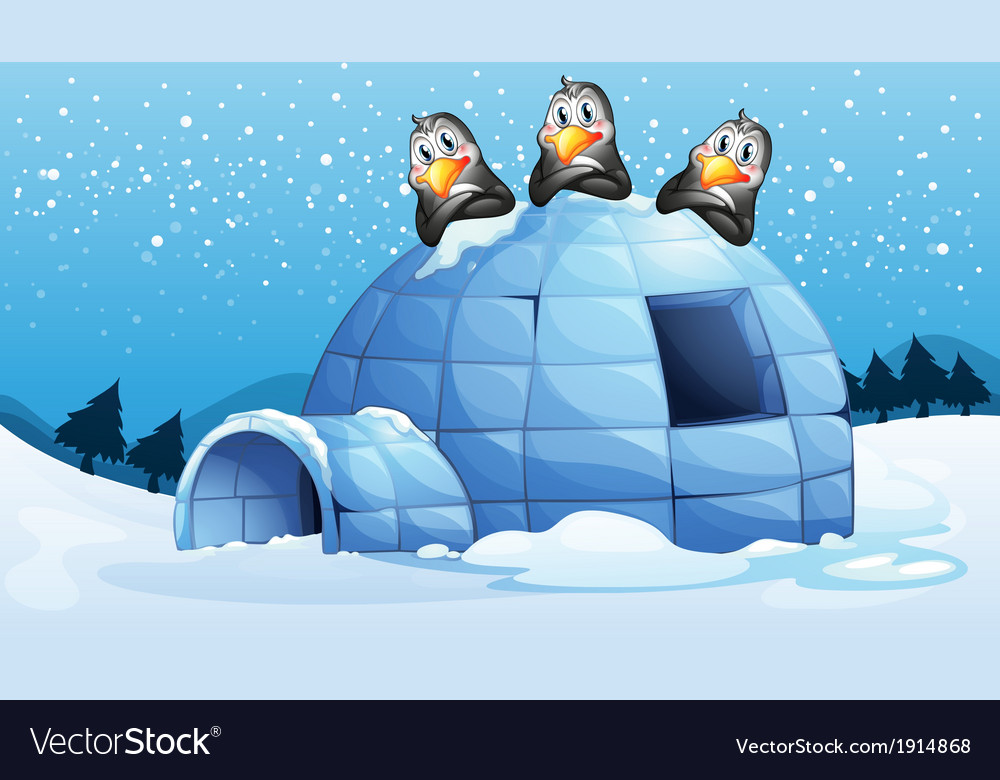 Three penguins above the igloo vector | Price: 3 Credit (USD $3)
