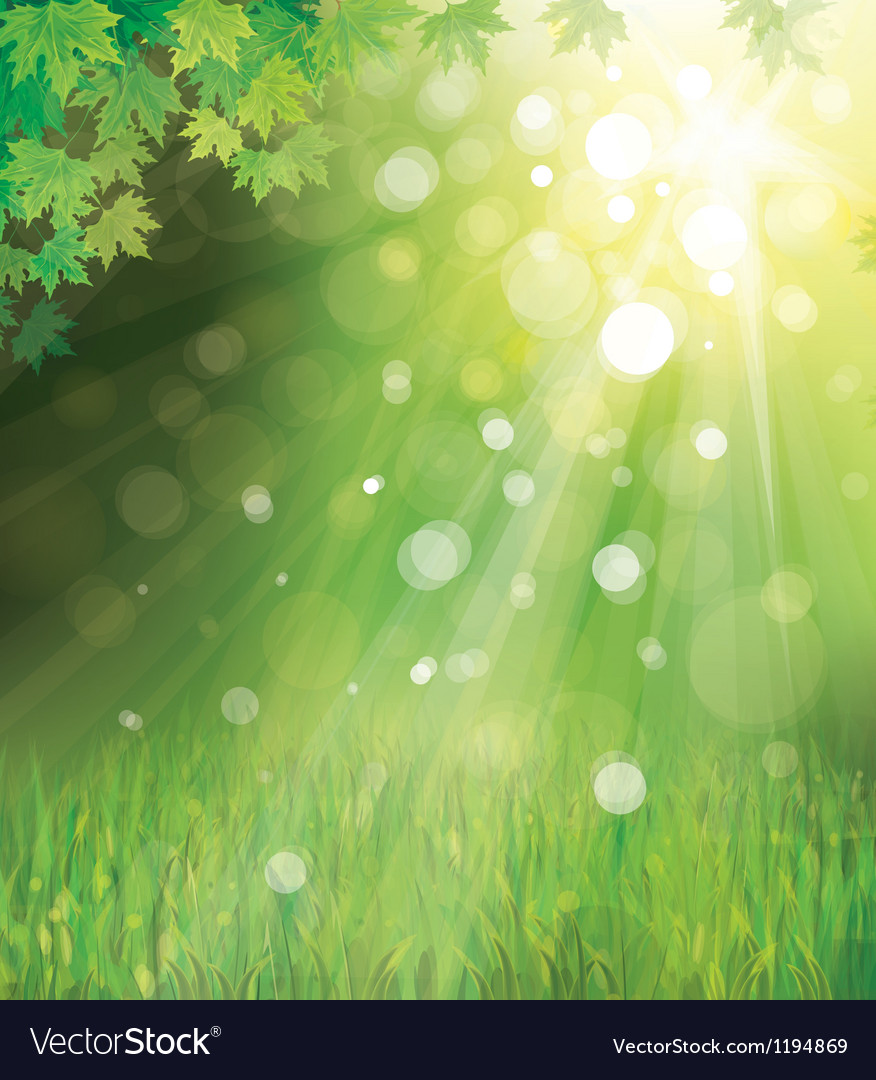 Green leaves on sunny background vector | Price: 1 Credit (USD $1)