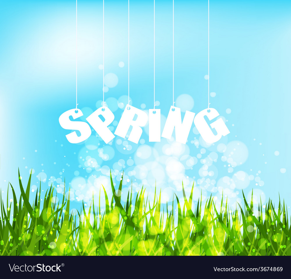 Spring word hanging on a strings background vector | Price: 1 Credit (USD $1)
