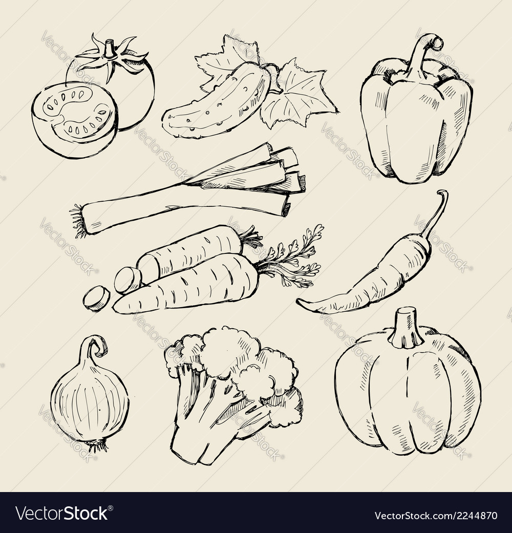 Black vegetables vector | Price: 1 Credit (USD $1)