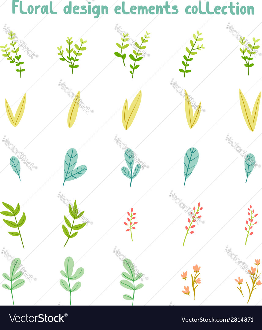 Decorative leaves and flowers design elements vector | Price: 1 Credit (USD $1)