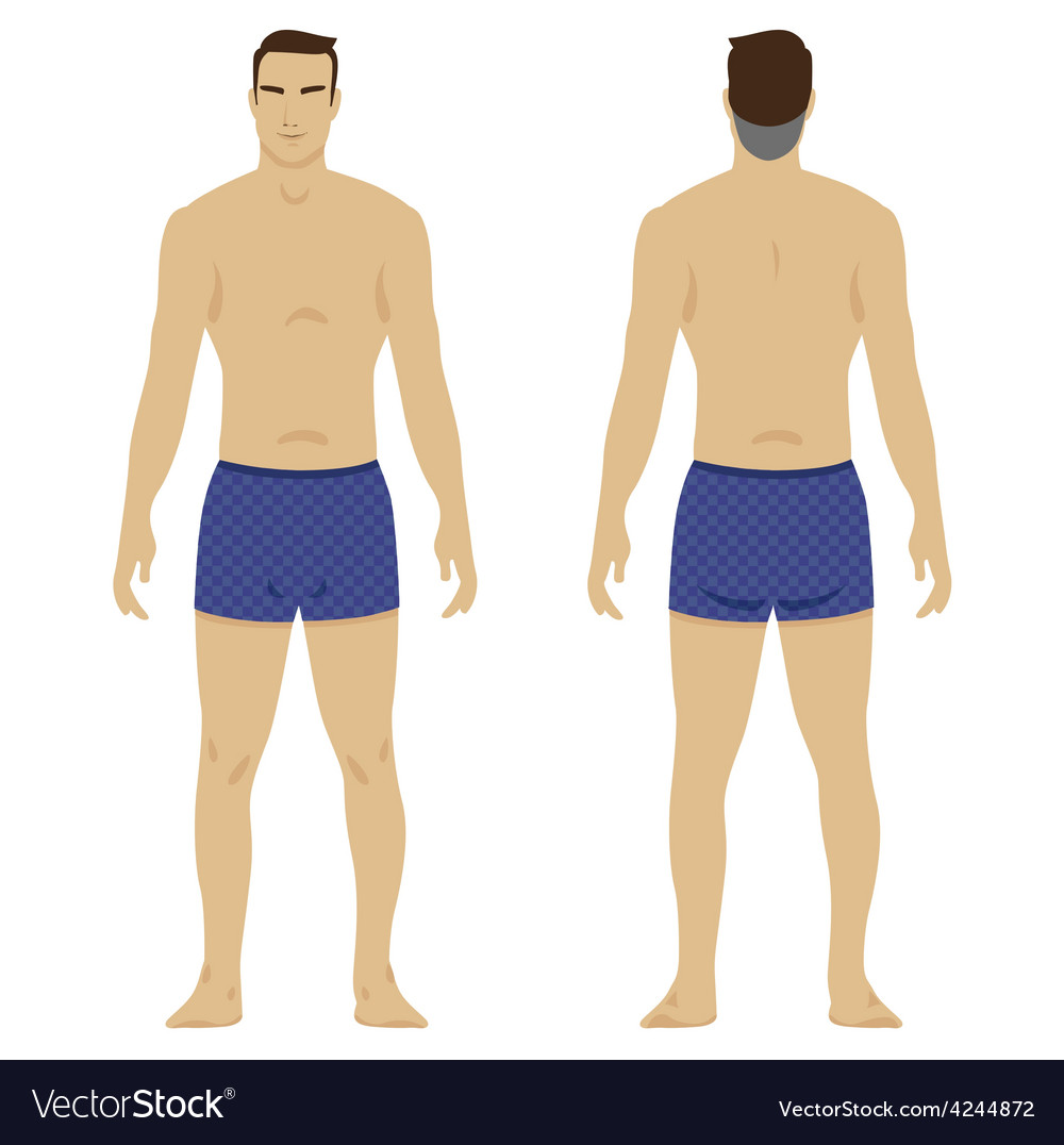 Man body vector | Price: 1 Credit (USD $1)