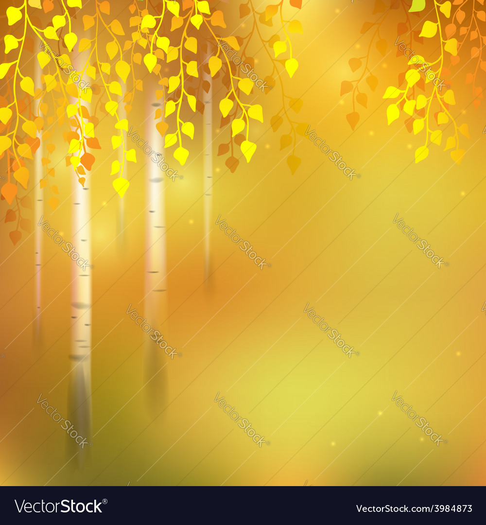 Birch autumn vector | Price: 1 Credit (USD $1)