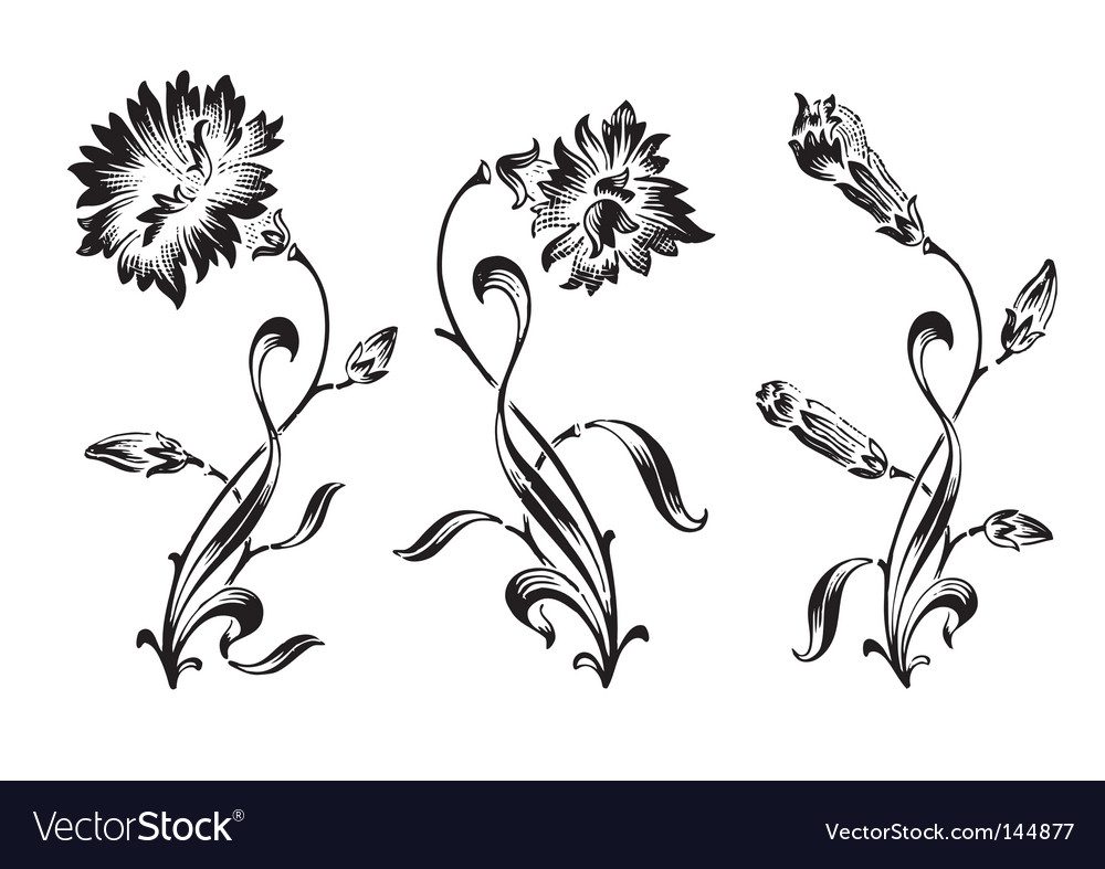 Antique flowers engraving vector | Price: 1 Credit (USD $1)
