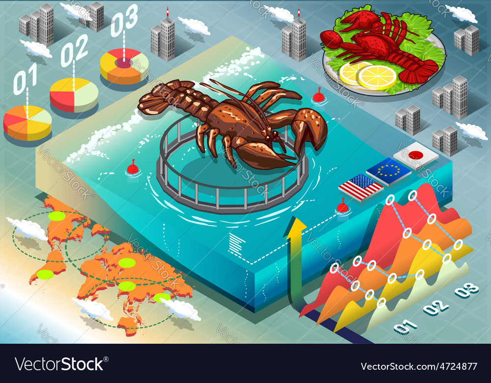 Isometric infographic of lobster breeding vector | Price: 3 Credit (USD $3)