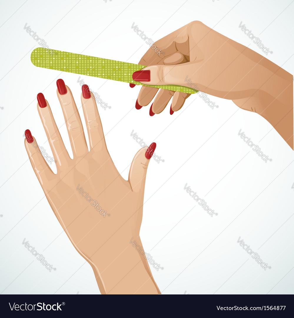 Woman hands vector | Price: 1 Credit (USD $1)
