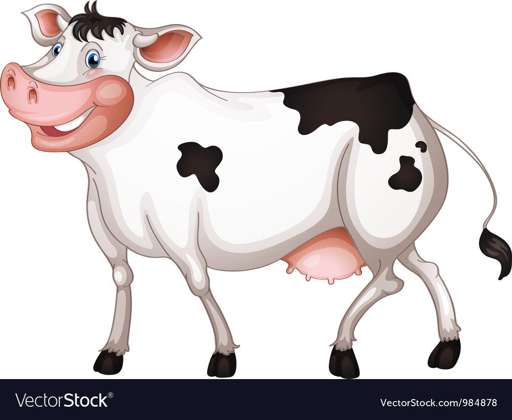 Dairy cow vector | Price: 1 Credit (USD $1)
