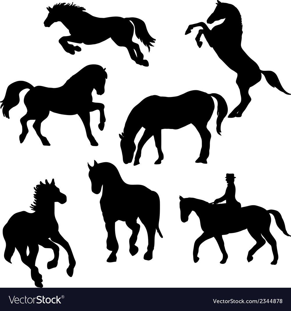 Wilde horse silhouettes set vector | Price: 1 Credit (USD $1)