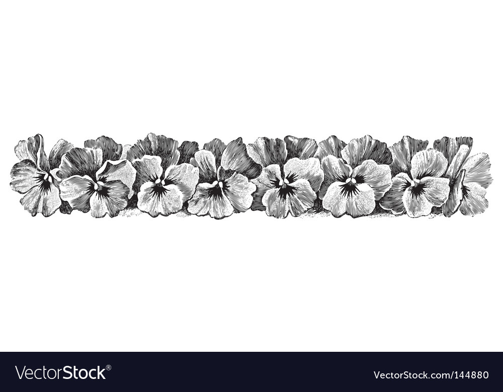 Antique pansies border engraving vector | Price: 1 Credit (USD $1)