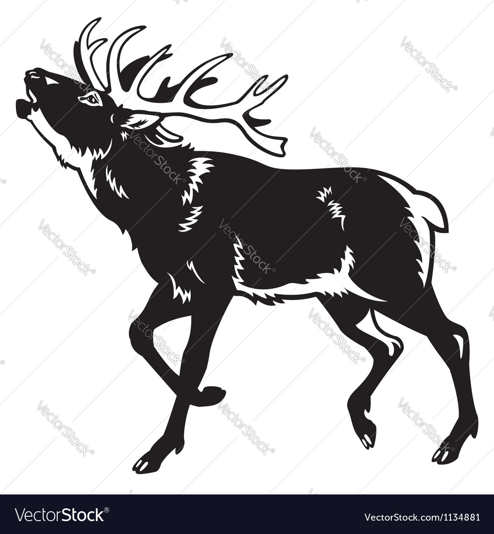 Red deer black and white vector | Price: 1 Credit (USD $1)