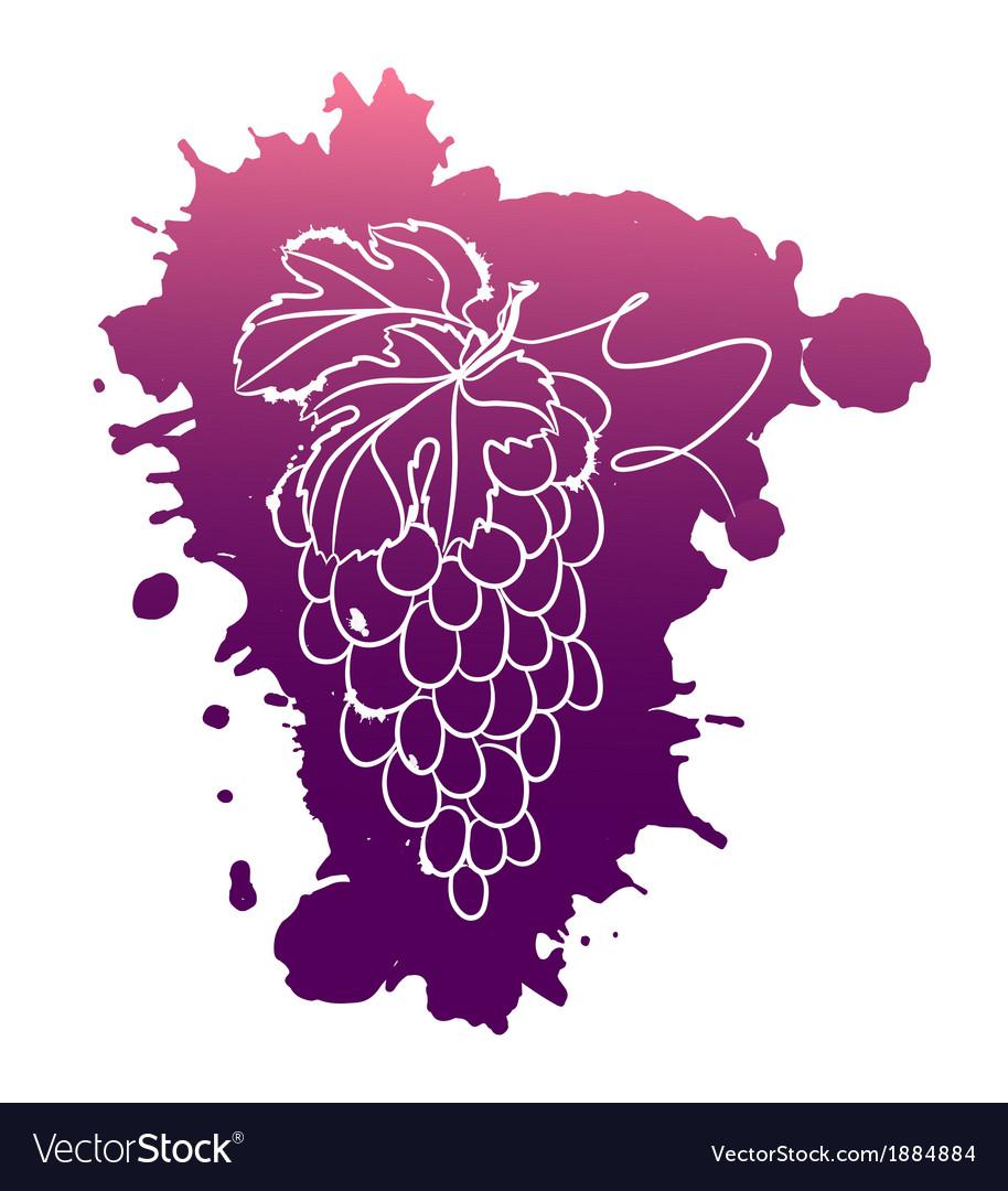 Watercolor of grapes vector   Price: 1 Credit (USD $1)