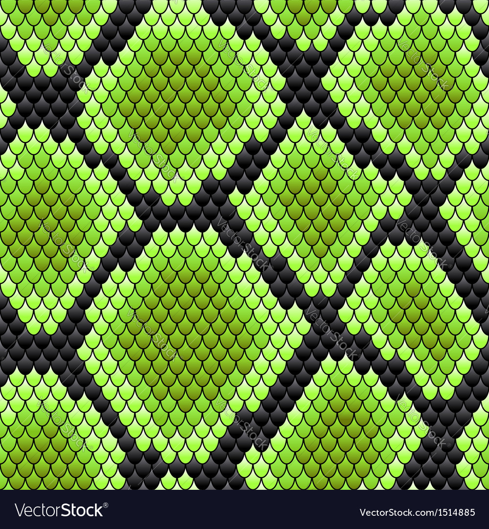 Green seamless pattern of reptile skin vector | Price: 1 Credit (USD $1)