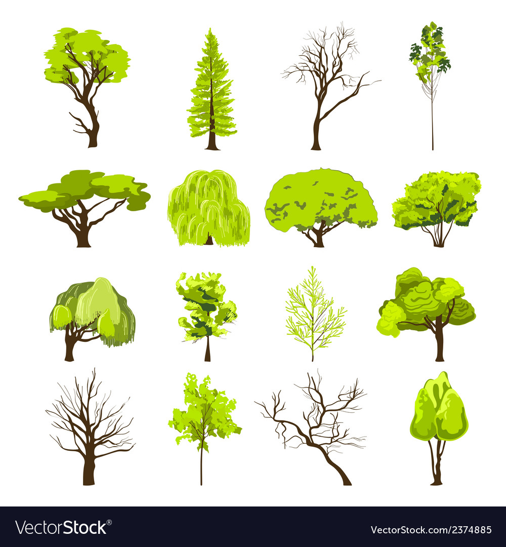 Sketch tree icons set vector | Price: 1 Credit (USD $1)