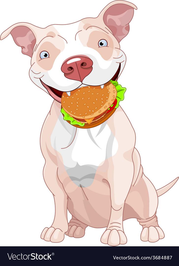 Pit bull dog eats hamburger vector | Price: 1 Credit (USD $1)