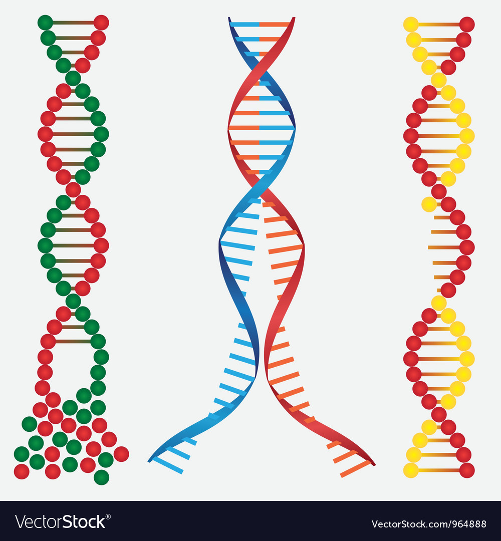 Broken dna chains vector | Price: 1 Credit (USD $1)