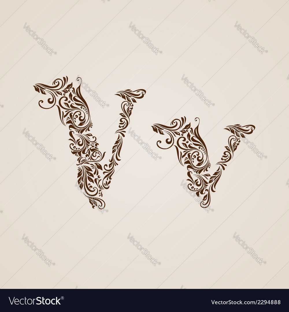 Decorated letter v vector | Price: 1 Credit (USD $1)