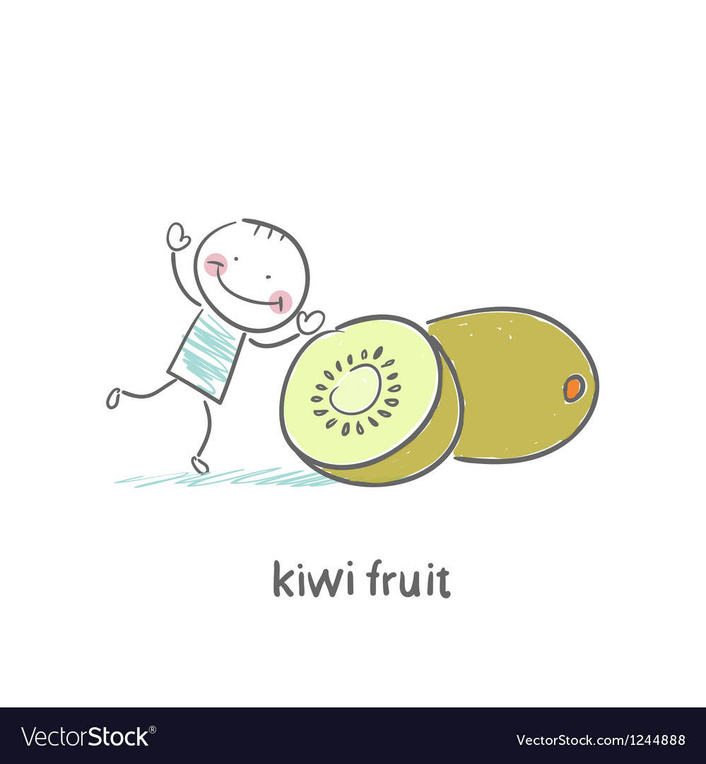 Kiwi fruit and a man vector | Price: 1 Credit (USD $1)