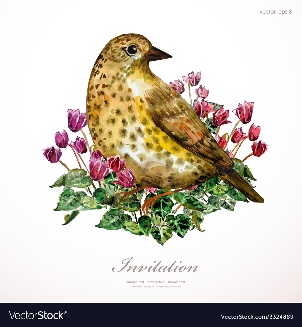 Watercolor painting cute bird on flowers i vector | Price: 1 Credit (USD $1)