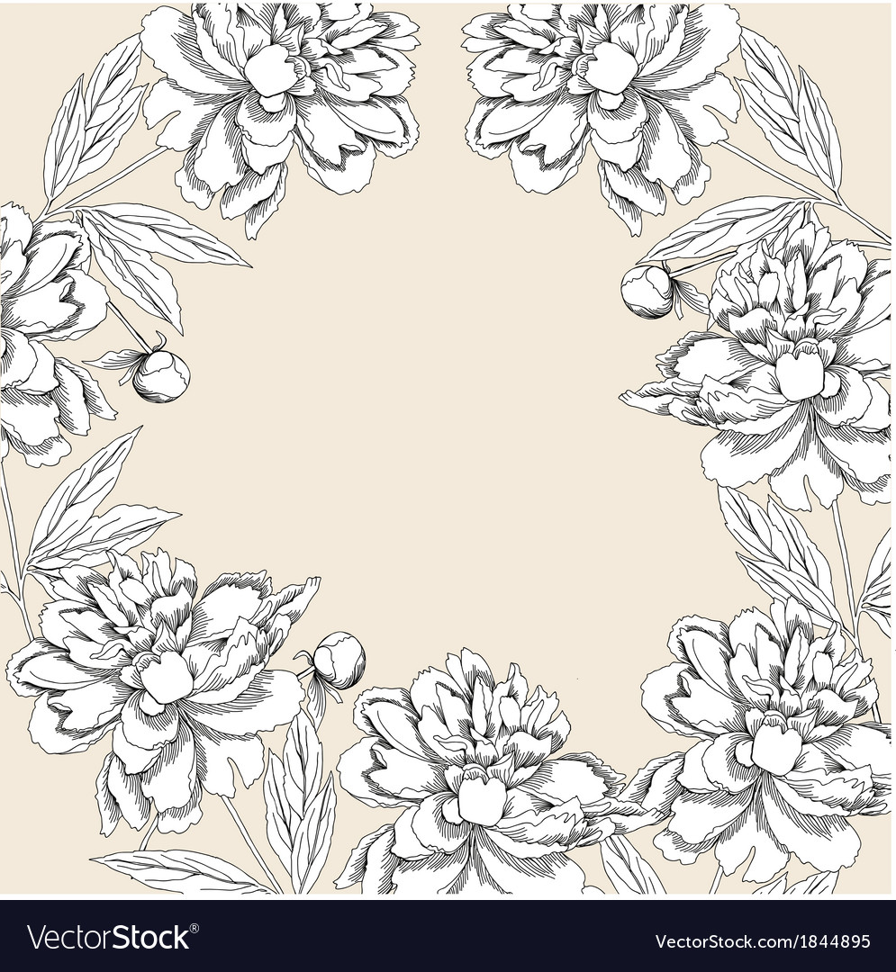 Background with white peony vector | Price: 1 Credit (USD $1)
