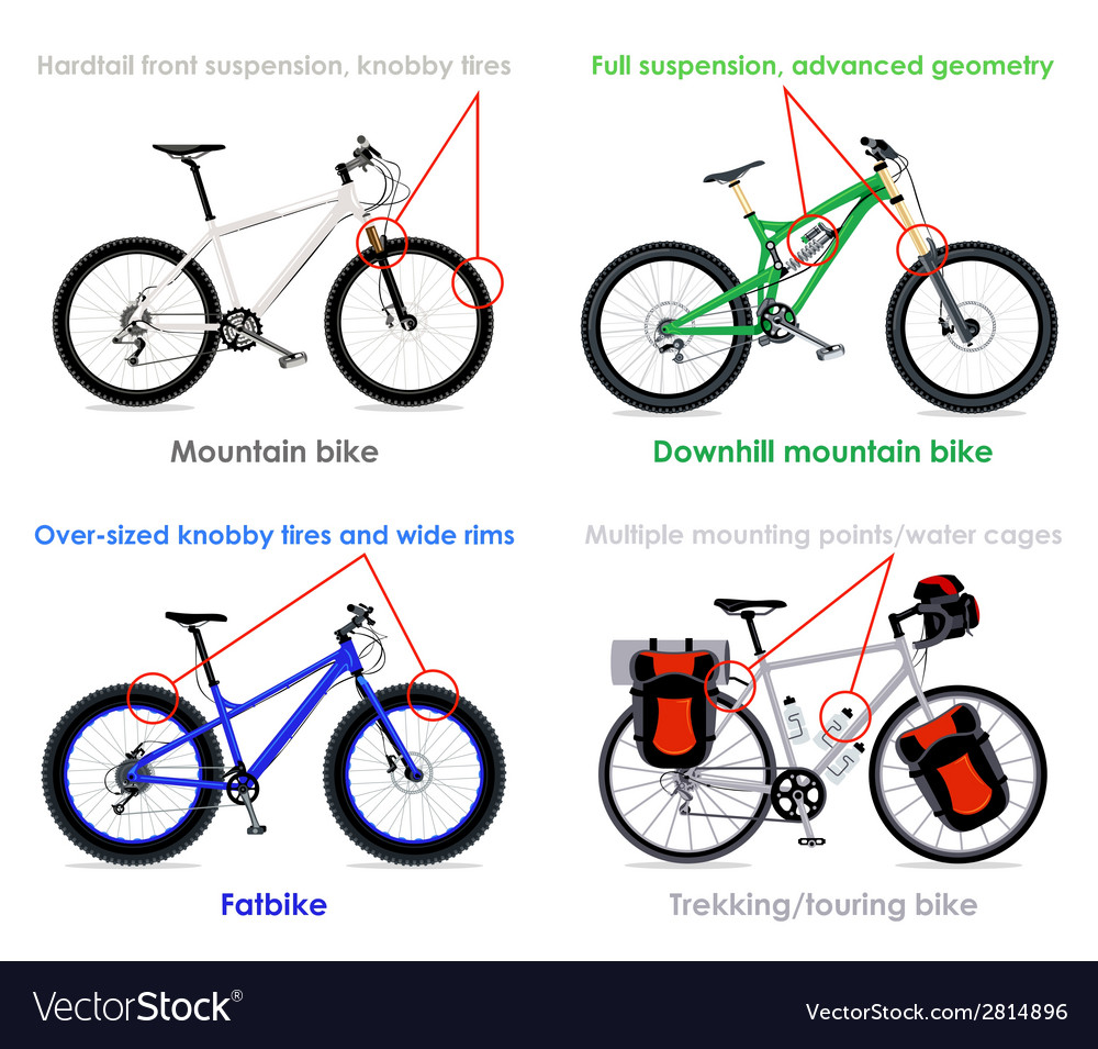 Bicycle types set iv vector | Price: 1 Credit (USD $1)