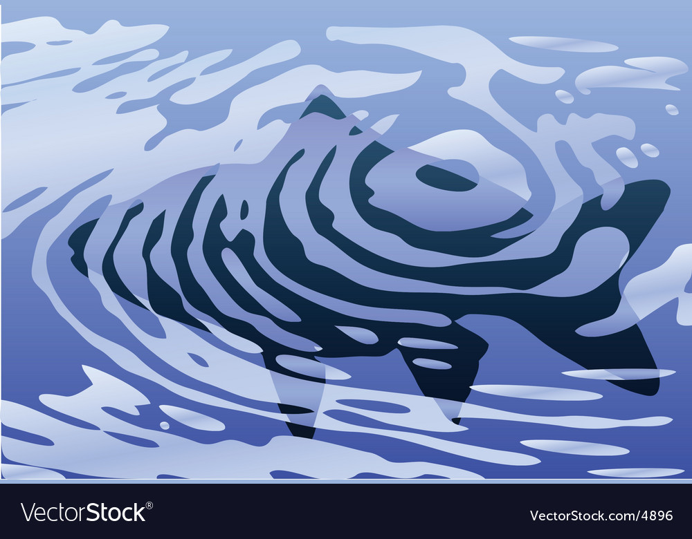 Rippled fish vector | Price: 1 Credit (USD $1)