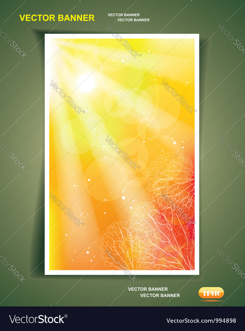 Autumn or summer background vector   Price: 1 Credit (USD $1)