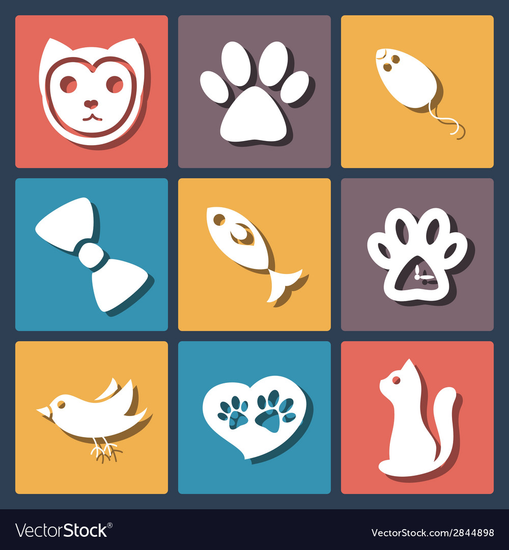 Flat pet cat icons set vector | Price: 1 Credit (USD $1)