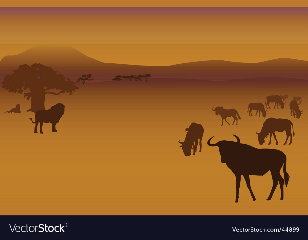 Safari vector | Price: 1 Credit (USD $1)