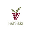 Mosaic raspberry design template vector
