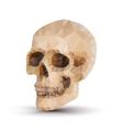 Triangle human skull vector