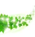 Flying maple leaves vector